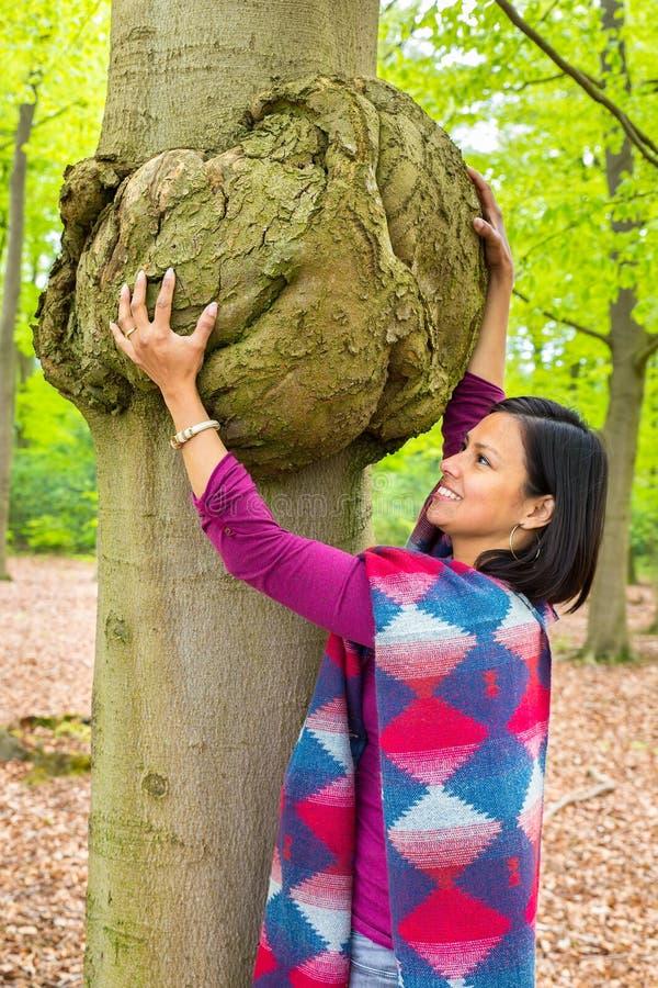 Kvinna som rymmer cancer- tumör på bokträdträd royaltyfri foto