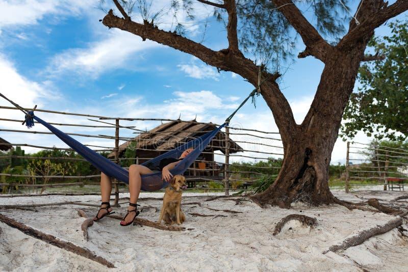 Kvinna som sover på hängmattan med hunden fotografering för bildbyråer