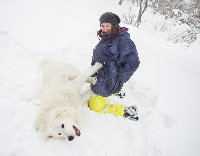 Kvinna som spelar med en vit hund i snön fotografering för bildbyråer