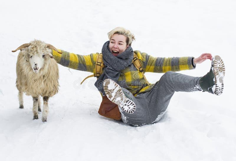 Kvinna som spelar med ett får i snön arkivbild