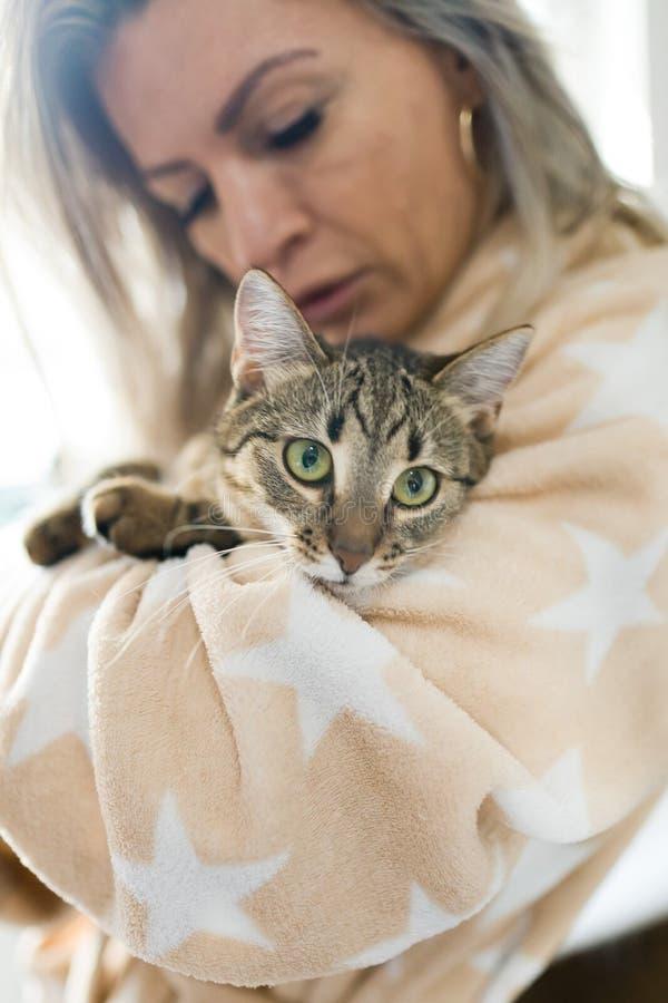 Kvinna som spelar med katten, hem- husdjur royaltyfri fotografi