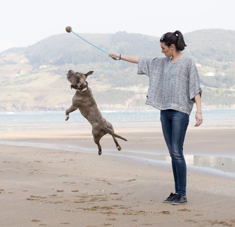 Kvinna som spelar och utbildar hunden som är utomhus-. royaltyfria foton