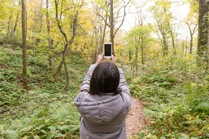 Kvinna som tar fotoet på skogen royaltyfria foton