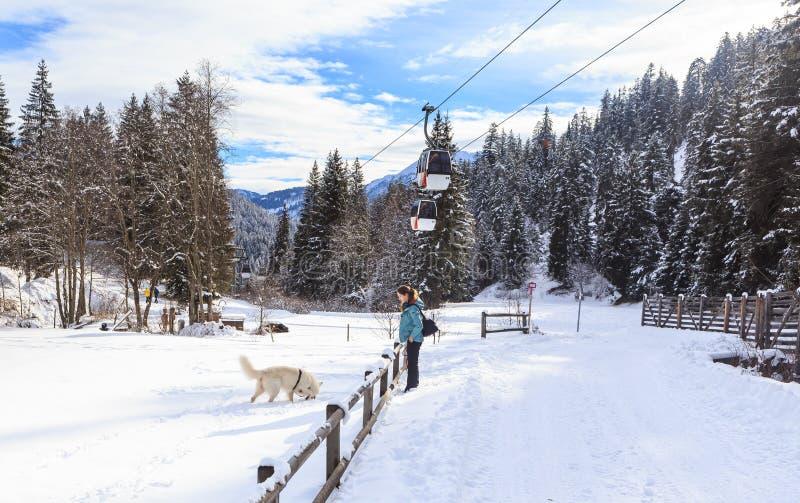 Kvinna som utbildar hennes hund Ski Resort Laax royaltyfria foton