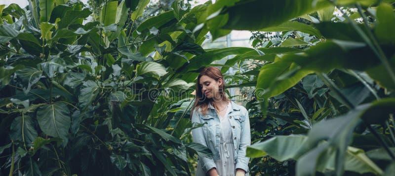 Kvinnaanseende i ett växthus fotografering för bildbyråer
