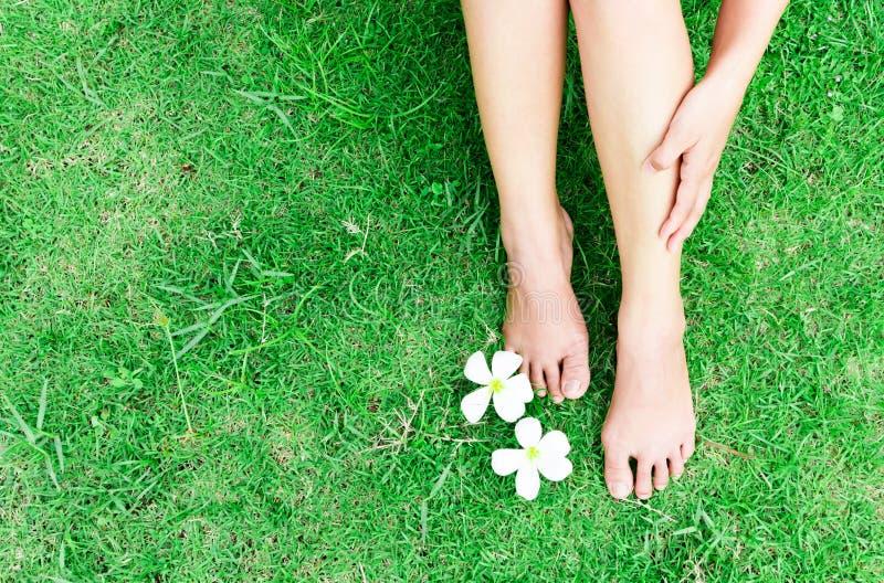 Kvinnaben kopplar av känsla på bakgrund för grönt gräs med ljus av royaltyfri bild