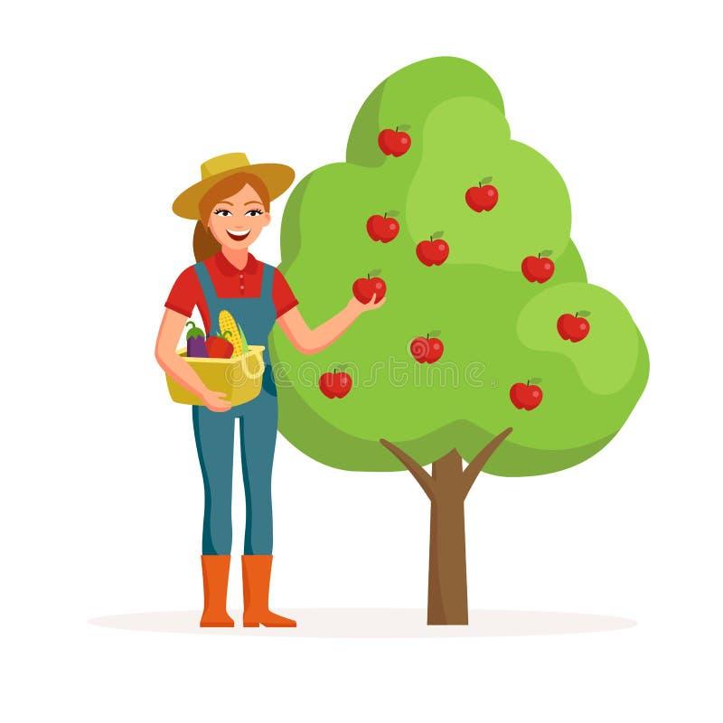 Kvinnabonde nära äppleträdet som rymmer det mogna röda äpplet och ler med hinken av grönsaker Lantbrukbegreppsillustration royaltyfri illustrationer