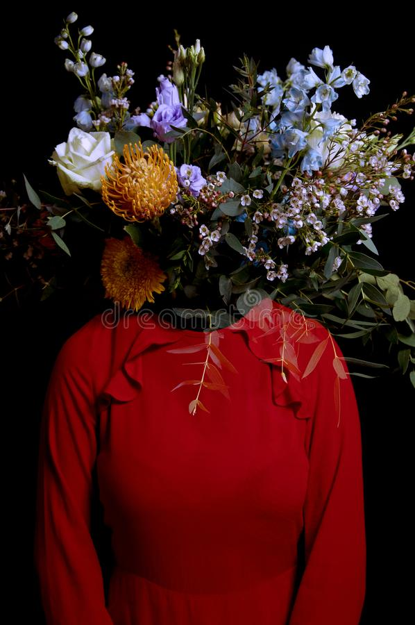 Kvinnadoft - ny doft fotografering för bildbyråer