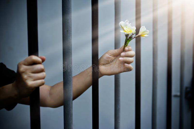Kvinnafånge i fängelse med vita blommor royaltyfri fotografi