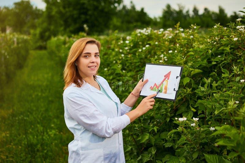 Kvinnaforskaren som arbetar i fruktträdgård och, visar nivån av skördtillväxt genom att använda infographics Biologinspektören un fotografering för bildbyråer