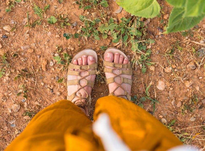Kvinnafot med sandaler på torr jord på sommar arkivfoto