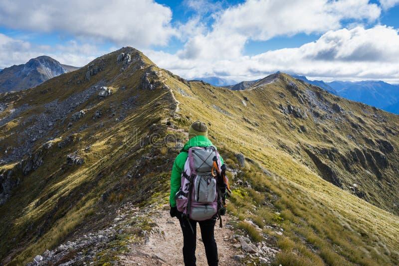 Kvinnafotvandrare som går på ett alpint avsnitt av det Kepler spåret fotografering för bildbyråer