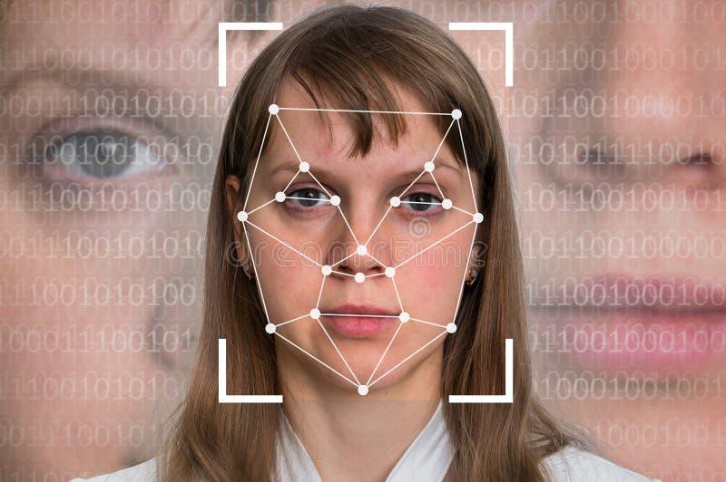 Kvinnaframsidaerkännande - biometric verifikation arkivfoto