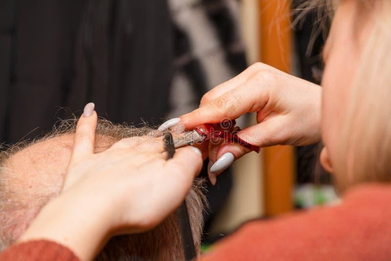 Kvinnafrisören klipper en man med en högt hårfäste med sax royaltyfri fotografi