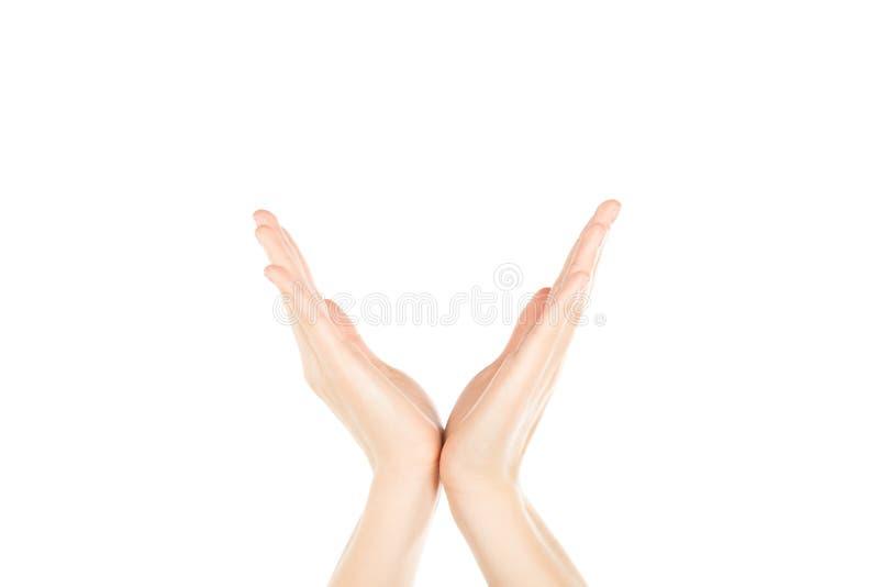 Kvinnahänder på vit bakgrund arkivfoto