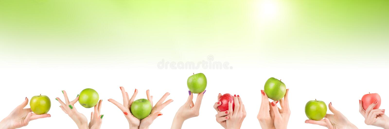 Kvinnahänder ställde in med äpplen på abstrakt grön bakgrund royaltyfri bild