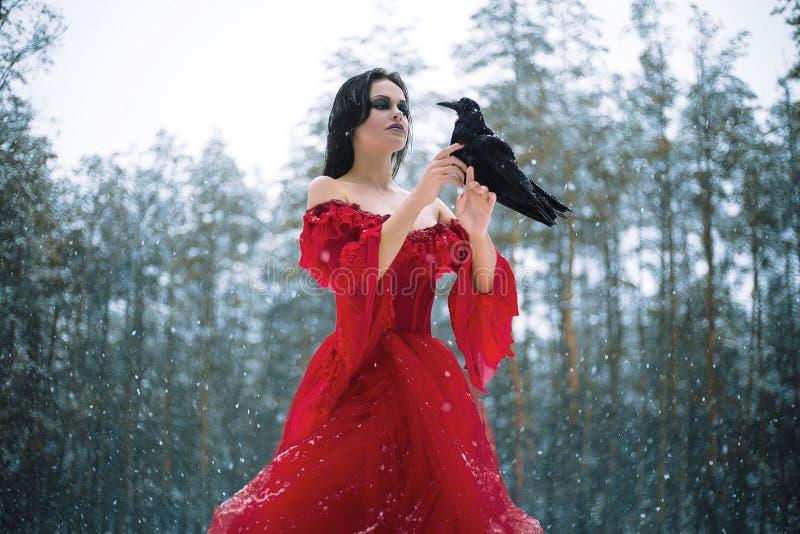 Kvinnahäxa i röd klänning och med korpsvart i hennes händer i snöig fo royaltyfri bild