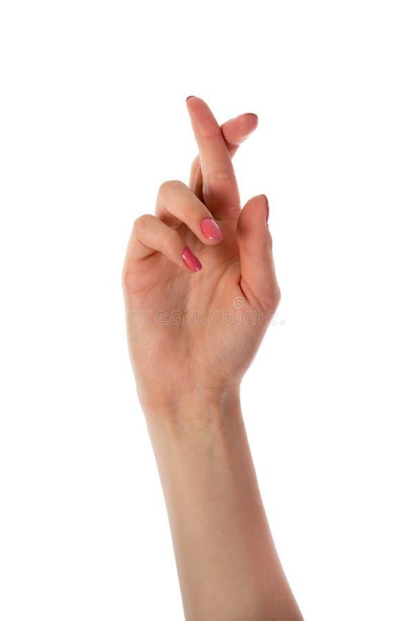 Kvinnahand med korsade fingrar royaltyfria foton