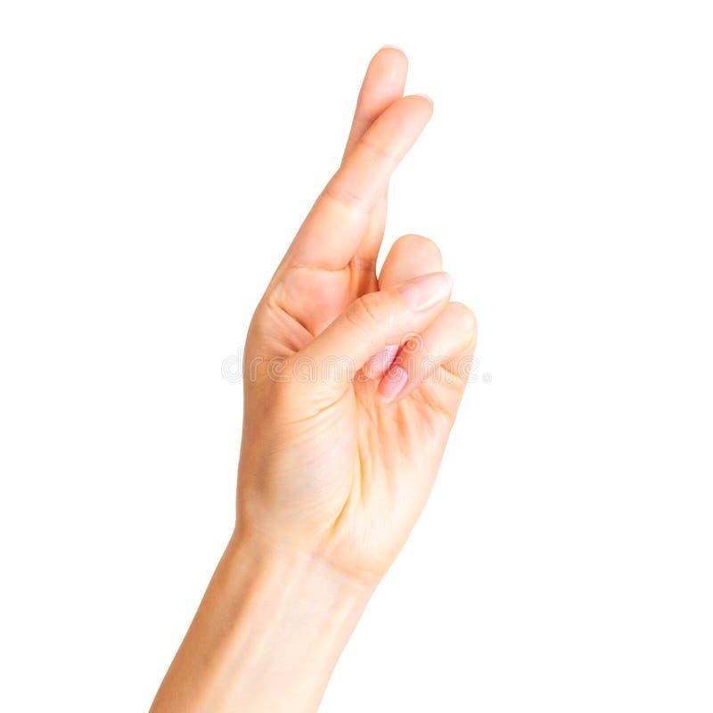 Kvinnahand med korsade fingrar, gest av symbolet för bra lycka arkivfoto