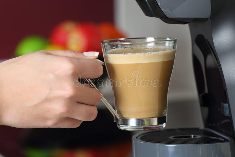 Kvinnahand som rymmer en kopp i en kaffebryggare arkivfoton