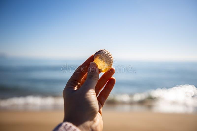 Kvinnahand som rymmer ett havsskal med den suddiga fyren på bakgrunden fotografering för bildbyråer