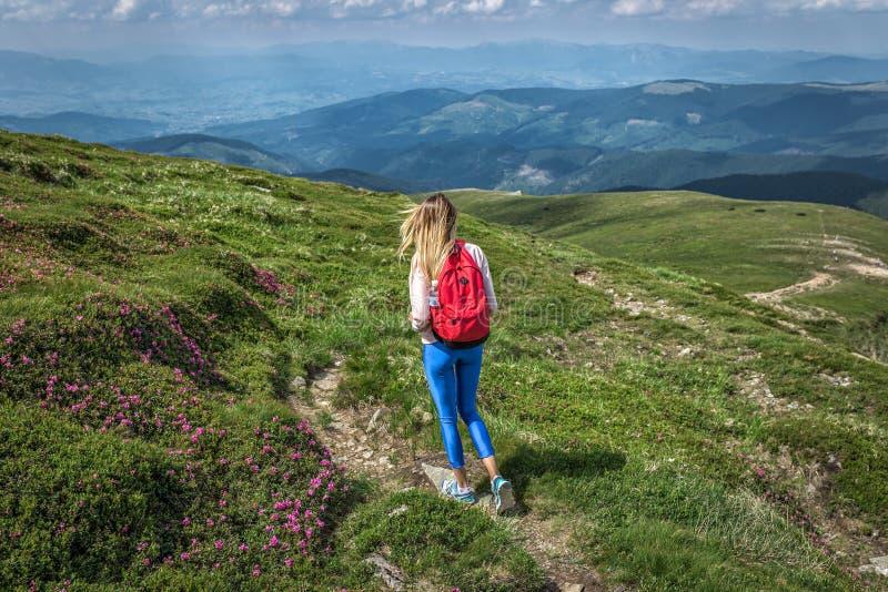 Kvinnahandelsresande, flicka med ryggsäcken som går bergsommaryttersidan arkivbilder
