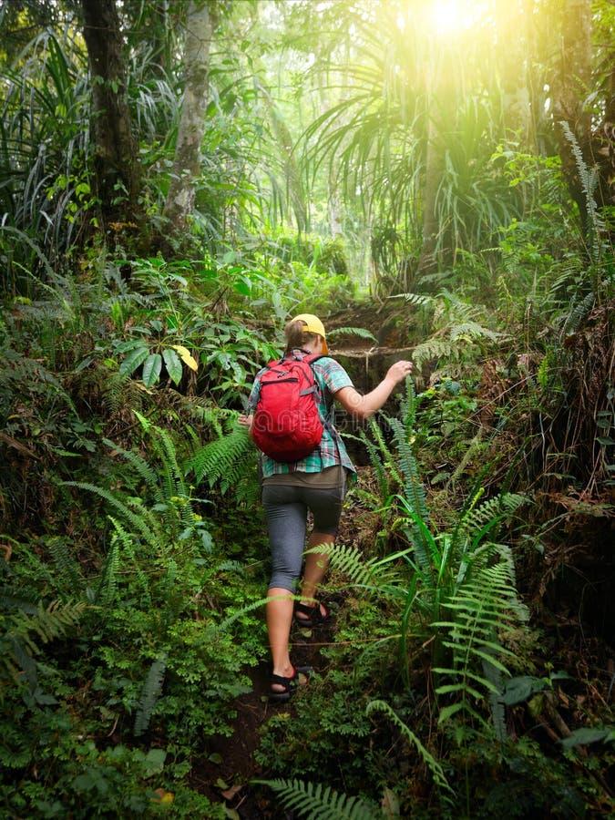 Kvinnahandelsresande med ryggsäckklättring kullen i skog arkivbild