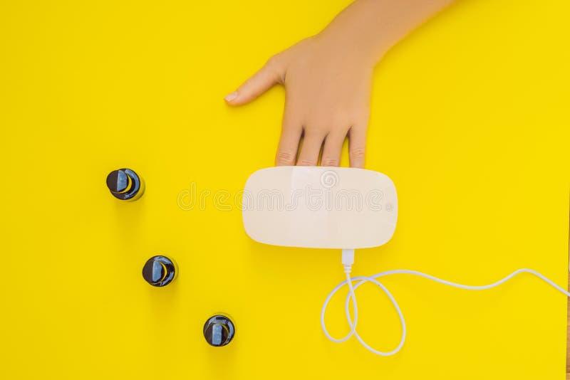 Kvinnahandomsorg Manicured spikar i UV lampa Strålar kurerar stelnar polermedel Litet spika konst- och manikyraffären Bästa sikt  fotografering för bildbyråer