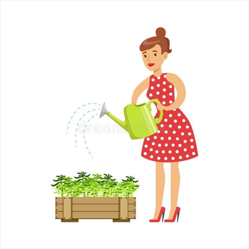 Kvinnahemmafru Watering The Plants i krukan, klassisk hushållarbetsuppgift av denhem fruillustrationen stock illustrationer