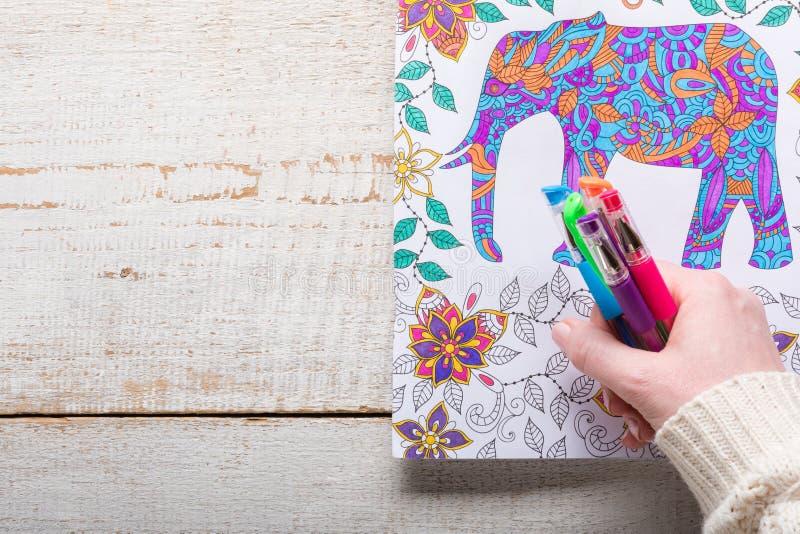 Kvinnainnehavet stelnar pennor, vuxna färgläggningböcker, ny trend för spänningsavlösning royaltyfri foto