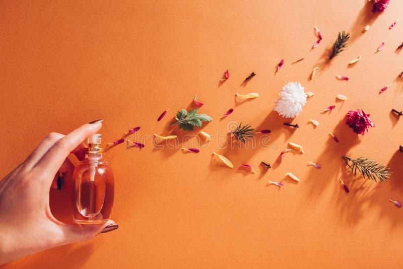 Kvinnainnehavflaska av doft med ingredienser Doft av blommor, kryddor, örter och granträdet på orange bakgrund arkivfoto
