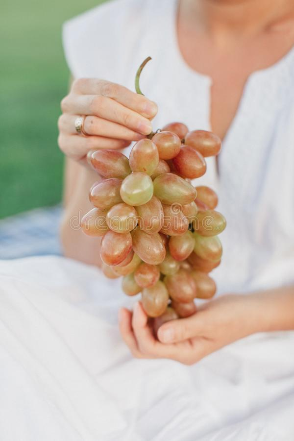 Kvinnainnehavgrupp av nya mogna saftiga druvor på bakgrund av naturen arkivfoto