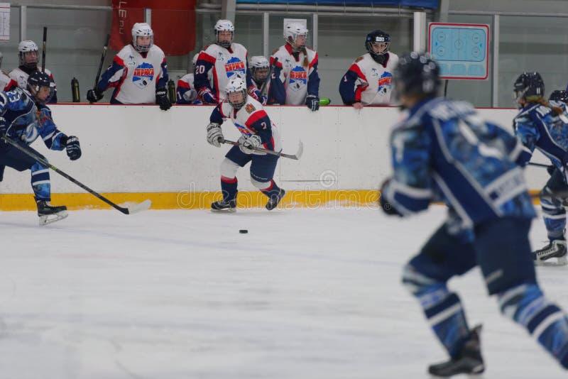 Kvinnaishockeymatch Dinamo St Petersburg vs Biryusa Krasnoyarsk royaltyfri bild