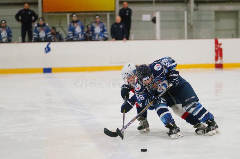 Kvinnaishockeymatch Dinamo St Petersburg vs Biryusa Krasnoyarsk arkivfoton