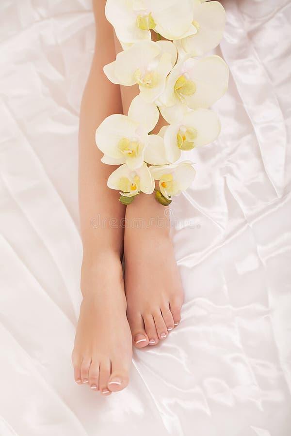 Kvinnakroppomsorg Slut upp av långa kvinnliga ben med perfekt slät mjuk hud, pedikyr och härliga händer med naturlig manikyr, H fotografering för bildbyråer