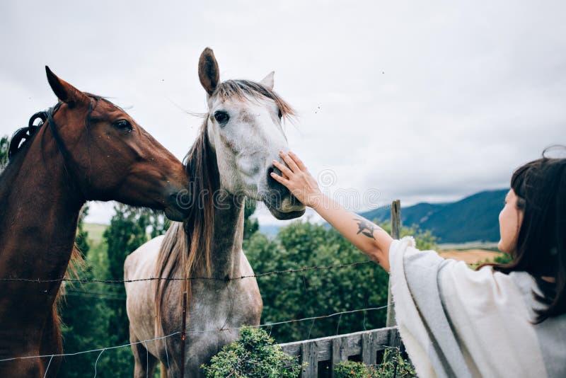 Kvinnalekar med hästar arkivfoton