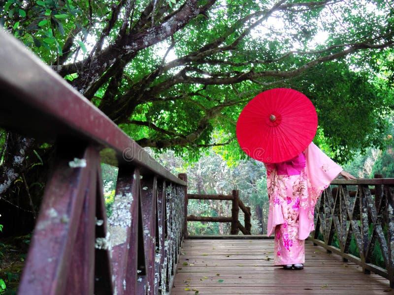 Kvinnan bär den rosa japanska traditionella klänningstilkimonot Flickan rymmer det röda paraplyet arkivbild