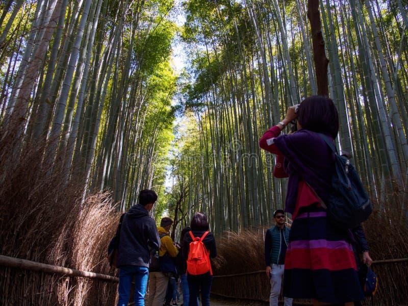Kvinnan fotograferar den Arashiyama bambudungen, Kyoto, Japan arkivbilder
