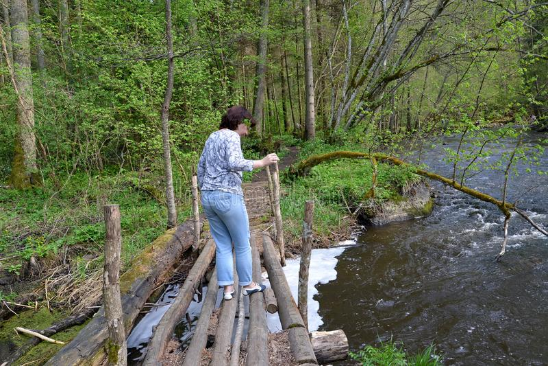 Kvinnan går försiktigt på träbron till och med den röda floden blå solig russia för tak för daghuskaliningrad region sommar royaltyfri fotografi
