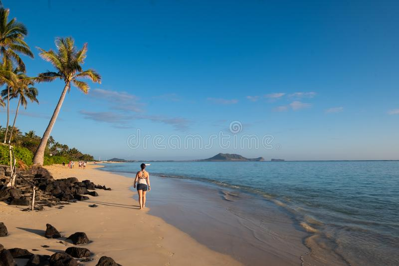 Kvinnan går i avståndet längs stranden royaltyfri bild