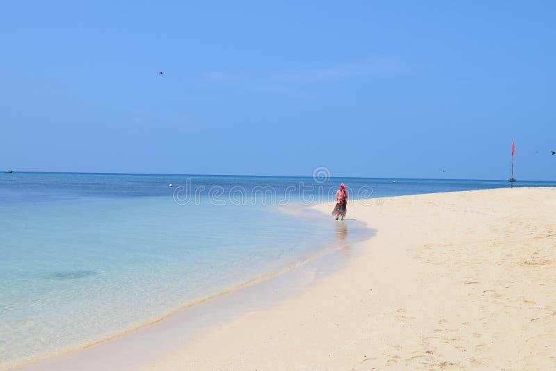 Kvinnan går på stranden på den gröna ön arkivbild
