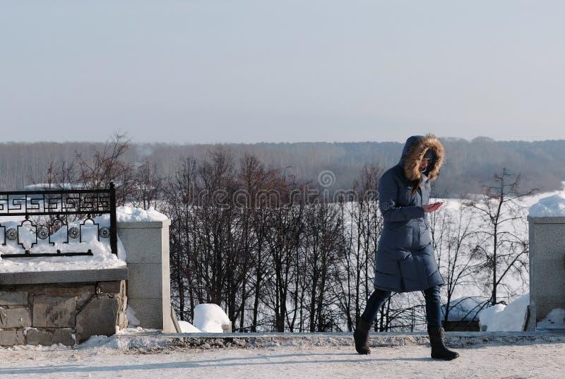 Kvinnan i blått ner omslaget med pälshuven som går och ser in i mobiltelefonen i vinter, parkerar royaltyfri foto