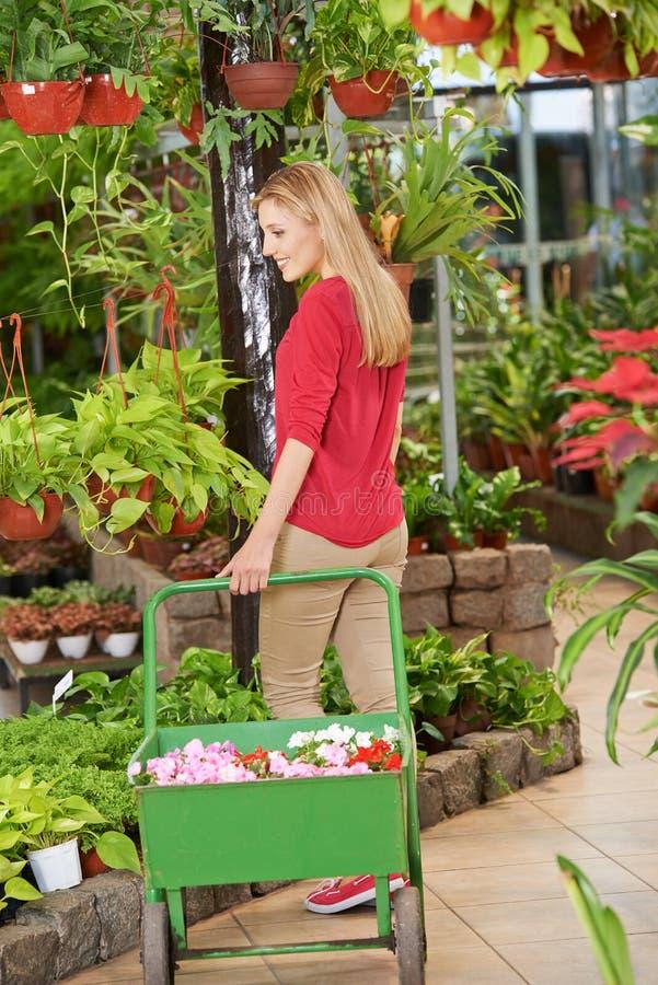 Kvinnan i trädgårdmitten köper växter arkivfoto