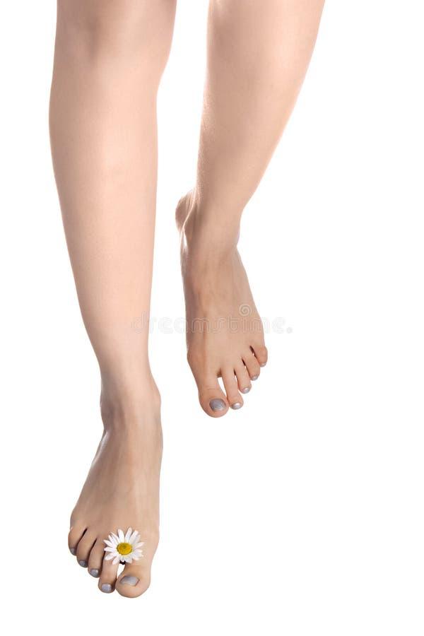 Kvinnan lägger benen på ryggen går med oxe-synar royaltyfri fotografi