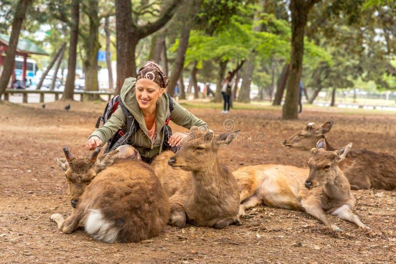 Kvinnan matar hjortar royaltyfria foton