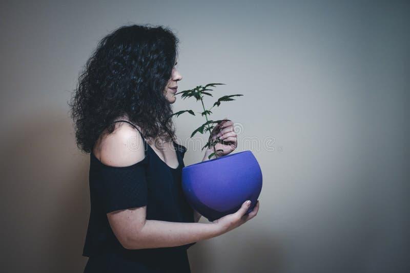 Kvinnan med den medicinska marijuanaväxten i hand r royaltyfri bild