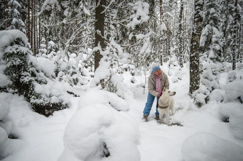 Kvinnan med en hund går på i ett vinterträ arkivbild