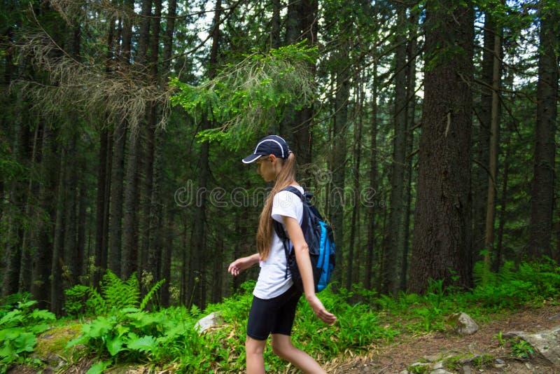 Kvinnan med ryggsäcken går på bergskogen arkivfoton