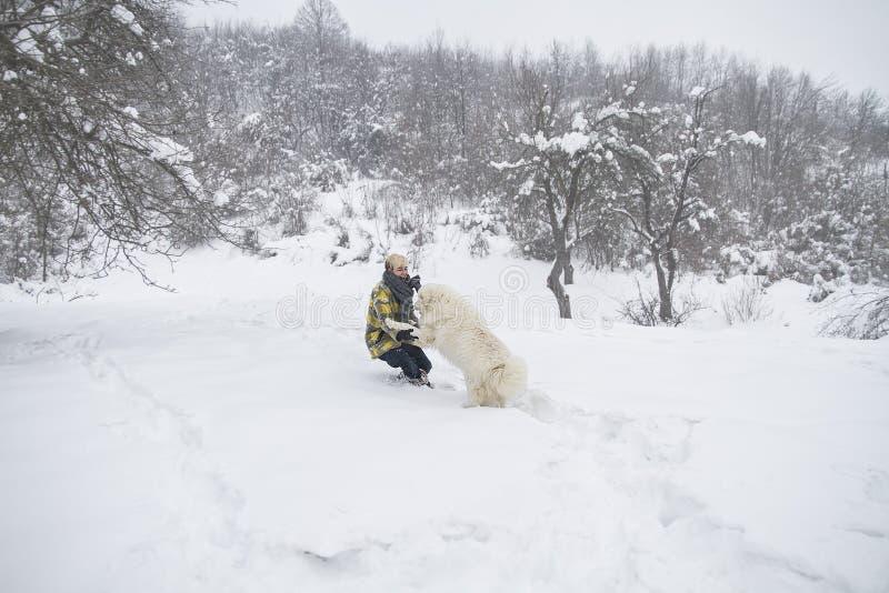 Kvinnan plaskar med en hund i snön royaltyfri fotografi