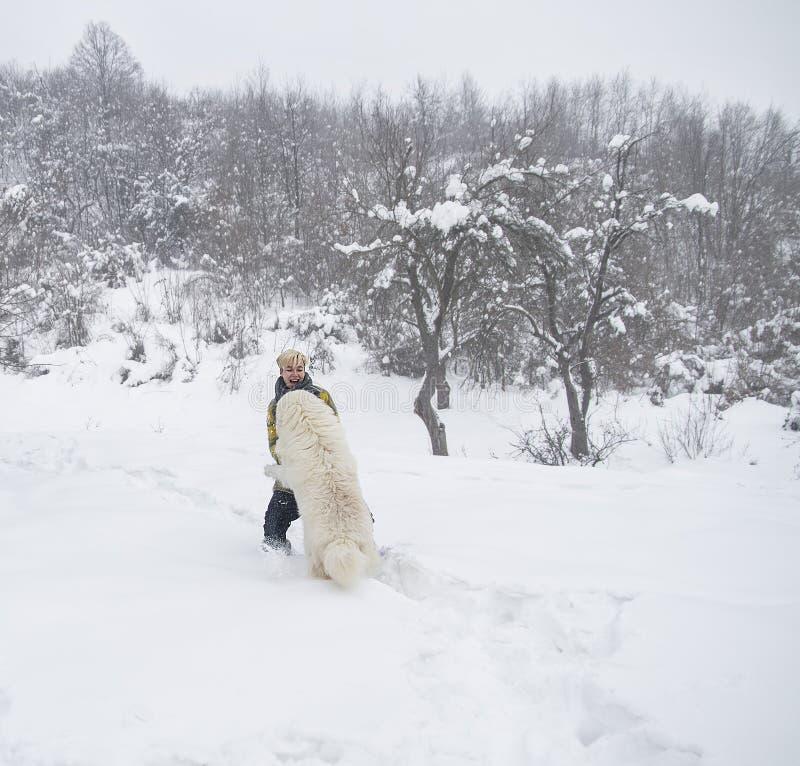 Kvinnan plaskar med en hund i snön fotografering för bildbyråer